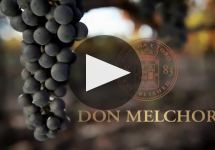 Don Melchor Winery Video