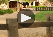 Langmeil Winery Video