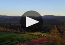 Shannon Ridge Shannon Ridge Winery Video