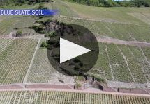 Dr. Loosen Winery Video