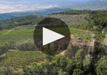 La Lecciaia Winery Video