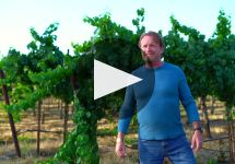 Cycles Gladiator Winery Video