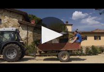 Viticcio Winery Video