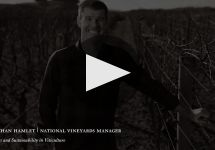 Craggy Range Winery Winery Video