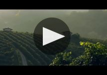 Mionetto Winery Video