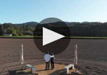 Larkmead Winery Video