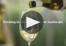 Yealands Winery Video