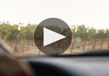 Mark West Winery Video