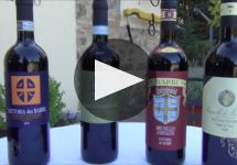Fattoria dei Barbi Winery Video