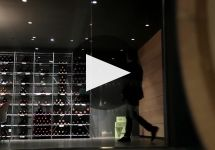 Bodegas Cepa 21 Winery Video