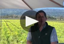 Honig Vineyard & Winery Winery Video