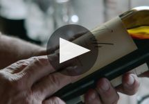 Josh Cellars Winery Video