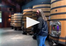 Angeline Winery Video