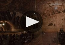 Laurent Perrier Winery Video