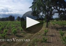 Hartford The Vineyards of Hartford Family Winery Video