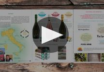 Cantine Cavicchioli Winery Video