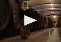 Fontanafredda Winery Video
