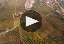 Abbona Winery Video