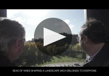 Bodegas Muga Winery Video