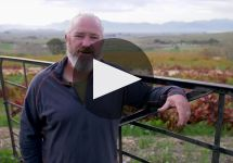 Badenhorst Winery Video