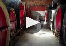 Campbells Winery Video