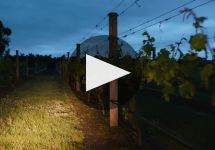 Handpicked Wines Winery Video