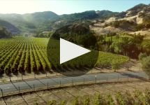 Bonterra Winery Video