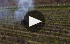 Bouchard Pere & Fils Winery Video
