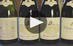 Albert Bichot Winery Video