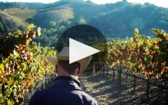Adelaida Winery Winery Video