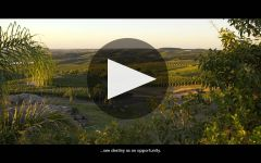 Bodega Garzon Uruguay Winery Video