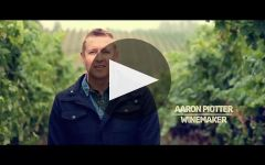 Ghost Pines Winery Video