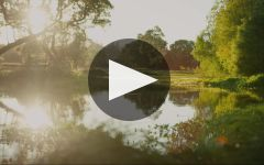 Raeburn Winery Video