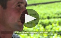 Domaine Pierre Gelin Winery Video