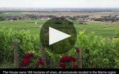 Champagne Bollinger Winery Video