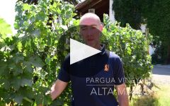 Anka Winery Video