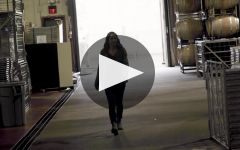 J Vineyards & Winery Winery Video