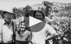 Caymus Winery Video