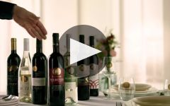 Carmel Winery Video