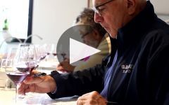 G.D. Vajra Winery Video