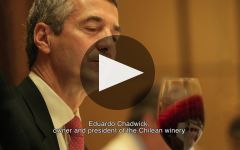 Errazuriz Winery Video