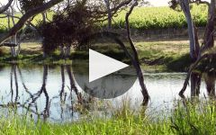 Yangarra Estate Vineyard Winery Video