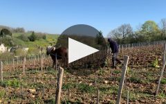 Tania et Vincent Careme Winery Video
