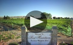 Canvasback Winery Video