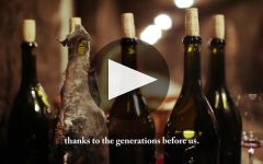 Domaine Tollot-Beaut Winery Video