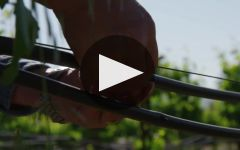 Parducci Winery Video