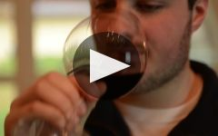 Luciano Sandrone Winery Video