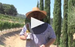 Benziger Family Winery Winery Video