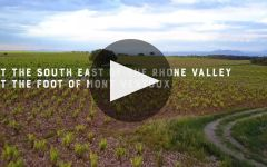 Cellier des Dauphins History in the Making Winery Video