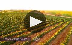 Opaque Winery Video